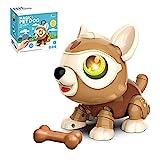 Fernbedienung Roboter Hundespielzeug - DIY Roboter Hund Tiere Spielzeug für Kinder Smart Puppy Interactive Intelligent Educational Kinderspielzeug, Geschenke für 3-12 Jahre alte Jungen und Mädchen