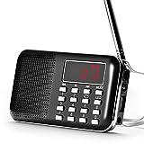 Raddy RF23 tragbar Radio Klein AM/FM Kurzwellenempfänger MP3 Musik Player, unterstützt Mikro USB TF Karte, mit LCD-Anzeige Wecker Externe Antenne und Chargeable Batterie (Schwarz)