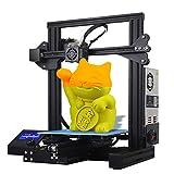 NaoSIn-Ni 3D Drucker, Großer FDM 3D-Metalldrucker Druckfunktion Fortsetzen Druckgröße 220 * 220 * 250 mm Für Bastler, Designer, Heimanwender
