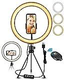 ELEGIANT LED Ringlicht Stativ 10.2' Selfie Ringleuchte mit Bluetooth Fernbedienung dimmbar 3 Lichtfarben 11 Helligkeitsstufen für Tiktok YouTube Live-Stream Selfie Portrait Volg Schminken