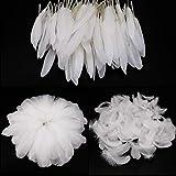 250 Stück Bunte Federn, MWOOT Weiß Gänsefedern, ideal als Dekoration zum Karnival für Halloween Fest Masken, Kostüme und Basteln für Sicher und Ungiftig und Nicht verblassen