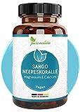 Sango Meereskoralle 3300mg aus Japan - hochdosiert 660mg Calcium 330mg Magnesium - Rein OHNE Zusätze - MADE IN GERMANY - LABORGEPRÜFT & vegan - 2:1 Verhältnis - Höchste Bioverfügbarkeit - 180 Kap