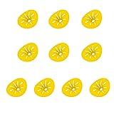 Yolluu Wespenfalle, wiederverwendbar, zum Aufhängen, gelbe Trichterfalle für Wespen, Fliegen, Insektenfänger, Hornetten, Outdoor, Garten, Schädlingsbekämpfung, 10 Stück