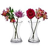 2er Set Glasvasen rund 20,3 cm hoch x 12,1 cm rund - Vielseitig einsetzbar: Stumpenkerze, Schwimmkerzenhalter oder Blumenvase - Perfekt als Hochzeitsdekoration
