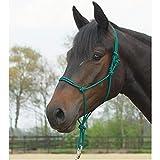 BUSSE Knotenhalfter STANDARD, Pony/Vollblut,
