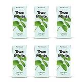 True Mints - 6er SET | FRISCHE MINZE | Pflanzliche und zuckerfreie Pastillen, 6 x 13g, 78 g