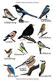 jz.birds Notizbuch A5 Gartenvögel Amsel Rotkehlchen Blaumeise Vogel Zeichnung 108 Seiten Schwarz&Weiß