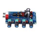 Verstärkerplatine HIFI OP-AMP Verstärker NE5532 Vorverstärker Lautstärke Tonregler montiert Board