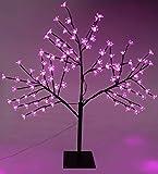Christmas Concepts® 80cm Rosa LED leuchten Kirschblüten-Baum - Weihnachten & das ganze J