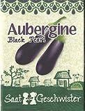 Die Stadtgärtner Aubergine-Saatgut | perfekt für die orientalische Küche | sehr hohe Keimrate