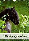 Pferdekalender (Wandkalender 2021 DIN A4 hoch)