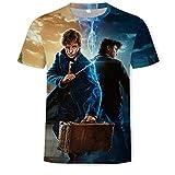 Harry Potter Herren T-Shirt Kurzarm Sommer Mode 3Dt-Shirt Sommer Anime T-Shirt Kurzarm O-Neck Top-EIN_XXL.