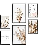 Heimlich® Premium Poster Set | OHNE Bilderrahmen | Stilvolles Set mit passenden Bilder als Wohnzimmer Deko | 2 x DIN A3 & 4 x DIN A4 - ca. 30x42 & 21x30 | » Pampas Boho Beige «