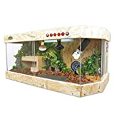 Acryl Crawler Box, Pet Shop Uhr Python Hedgehog Terrarium Warm Halten Belüftung Transparent Tortoise Vivarium (Size : 100 * 47 * 43cm)