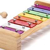 SCHMETTERLINE Harmonisches Xylophon für Kinder aus Holz mit Notenheft – Glockenspiel und Liederbuch mit 15 deutschen Kinderliedern zum Noten lernen – Musikinstrument für Mädchen und Jungen ab 3 Jahren