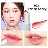Aesyorg Lippen Make-up Zweifarbiger V-förmiger Lippenstift Wasserdichte und lang anhaltende feuchtigkeitsspendende Lippe (A1)