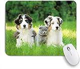 Benutzerdefiniertes Büro Mauspad,Hund Haustiere Welpenfamilie im Garten Australian Shepherds und eine Katzenlandschaft,Anti-slip Rubber Base Gaming Mouse Pad M