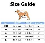 Hundegeschirr und Leine Set Weich Atmungsaktiv Welpengeschirr Step-In Reflektierende Hundeweste Geschirr Fit Verstellbar für Kleine Mittlere Hunde und Katzen (Grün, M)