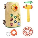 Allsmart Magnetisches Kleinkindspielzeugset, Spechtfang- und Fütterungsspiel, Spechtmagnetspielzeug, Insektenfangspiel Geschmackloses Kinderspielzeug