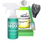 Bio Schimmelpilz-Entferner, 100% Chlorfrei, Komplettset von FungiNox gegen Schimmel & Stockflecken [Anti-Schimmel Spray, Mundschutz, Handschuhe, Schwamm, Anti-Schimmelfarbe weiß, Pinsel]