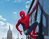 WallDiy Avengers Superheld Spiderman Hulk Thor Iron Man Tapete Wandbild Junge Schlafzimmer Wohnzimmer Kindergarten Schule Designer Raumdekoration