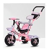 LOMJK Standardkinderwagen Kinderwagen Dreirad 1-5 Jahre altes Fahrrad Baby Infant Kinderwagen Fahrrad Kind Kinderwagen Kinderwagen Säuglingsauto Baby Kinderwagen Buggys (Color : Pink (Luxury))