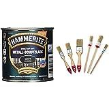 AkzoNobel (DIY HAMMERITE) Metall-Schutzlack Matt Schwarz 0,250 L, 5134931 & Color Expert Pinsel-Set, 6-teilig, helle Borste, 20/25 / 35 mm 82620510