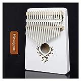 FXBXYLQ Tragbar 17 Key Mahagoni Thumb Piano Reed Music Keyboard Mini Klavier Hoher Qualität Hölzerner afrikanischer Finger-Klavier Musikalisches Geschenk (Color : G)