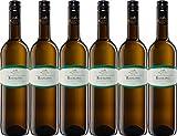 Oberkircher Winzer Vinum Nobile Riesling 2020 Trocken (6 x 0.75 l)