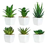 Ouddy 6 Stück Kunstpflanzen außenbereich Künstliche Pflanzen Kunstpflanzen Badezimmer Kunstpflanzen im Topf Künstliche Sukkulenten Tischdeko Haus Balkon Büro Deko MEHRWEG (Grün)