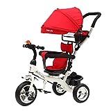 ALYHYB 2 in 1 Baby-Dreirad, Kleinkind-Kinderwagen, leichte Kinderpedal-Dreirad, Push-Trike mit verstellbarem abnehmbarem Baldachin seit 18 Monaten bis 5 Jahre huangcui