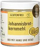 Werz Johannisbrotkernmehl glutenfrei, 1er Pack (1 x 100 g Dose) - B