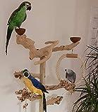 Kletterbaum für Vögel Papageien Freisitz Java Tree Wurzelholz Freiflug Landeplatz Papageienspielzeug 1,65