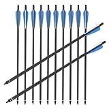 Trintion 12 Stück Pfeile, 20 Zoll Carbonpfeile Bogenpfeile mit Kunststoffbefiederung für Bogen, Recurvebogen, Langbogen und traditionellen Bogen Jagd Bogenschießen Sport
