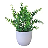 6 PCS NEU Künstliche Pflanzen Bonsai Kleine Baum Topfpflanzen Gefälschte Blumen Topf Ornamente Für Heimtextilien Hotel Gartendekoration - 11