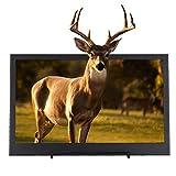 11,6 Zoll Monitor für Spiele, 1920x1080 Ultradünner Mini CCTV Monitor, Dual Mini HDMI HD Gaming Monitor 16:9 LED Vollbildbildschirm mit Großem Bildschirm, Tragbarer Monitor für Laptop(Schwarz)