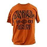 HARLEY-DAVIDSON Herrenshirt Dealer Shirt Backprint Tee Shirt T-Shirt Frontdruck New Texas New Road, 3XL