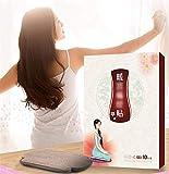 Herbal Feminine Heat Patches, Heat Patches gegen Regelschmerzen, Wermut-Schmerzlinderung Patch für Rücken + Schulter + Nacken + Bauch, Warm Belly Uterine Heating, um Kälte zu vertreiben (Eine Box)