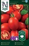 Tomatensamen Atyliade F1 - Nelson Garden Samen für Gemüsegarten - Tomaten Saatgut (8 Stück) (Einzelpackung)
