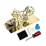 FXQIN Stirlingmotor Kit DIY Montage Stirling Generator Modell Spielzeug Experimentierkästen Kits für Physikalische Wissenschaften, Stirling Motor Kit Dampf-Kraftmaschine