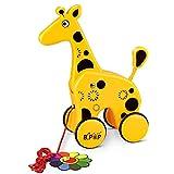 YoungRich süß Nachziehspielzeug, Baby & Kleinkindspielzeug,Mehrfarbig,für Kinder ab 1 Jahr (Giraffe)