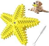Kauspielzeug für Hunde, Pet Molar Chew Spielzeug aus Naturkautschuk, Seestern-Form, Multifunktion Interaktives Spielzeug für Hunde, Zahnbürstenspielzeug (LAN)