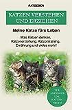 Katzen verstehen und erziehen: Der Katzenratgeber — Was Katzen denken, Katzenerziehung, Katzentraining, Ernährung und vieles mehr!