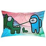 suichang Kissenbezüge Mode Dekorative Kissenbezüge für Innenbett Couch Wohnzimmer 20inchX30inch