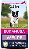Eukanuba Welpenfutter mit Lamm & Reis für kleine und mittelgroße Rassen - Trockenfutter für Junior Hunde, 2,5 kg