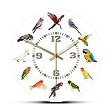 JPZCDK Moderne Wanduhr Birds Breeds Collection Wanduhr Papagei Vogel Haustier Arten Wandkunst Liebhaber Home Decor