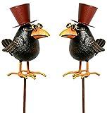 lustiger Deko-Stecker Garten-Stecker Rabe mit Zylinder und Brille Preis für 2 Stück