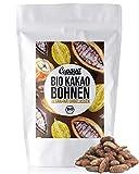Copaya Bio Kakaobohnen roh, ganze Bohnen vom Criollo Kakao ungeröstet, Edelkakaobohnen vegan in Rohkostqualität 1000g (1kg)