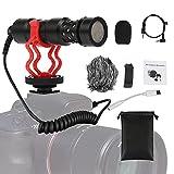 Mini Richtmikrofon VideoMikrofon,Professionelle Kondensatormikrofon für Kamera Camcorder Smartphones,Mikrofon für Live-Übertragung im Freien,VLOG-Aufzeichnung,Type-C Kabel