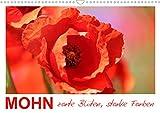 Mohn, zarte Blüten, starke Farben (Wandkalender 2021 DIN A3 quer)